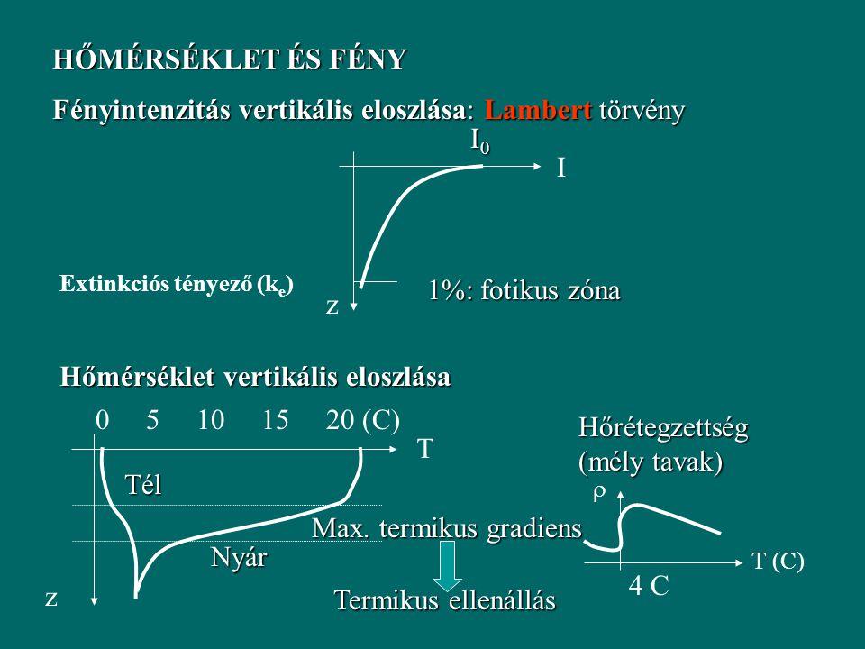Vollenweider modell előnyei: Egyszerű Tervezés, előrejelzés Hosszú távú átlagok A modell alkalmazási korlátai: Éves átlagok – több éves adatsor Egy paraméter (v s ) – aggregált jellemző (P forgalmat befolyásoló összes hatást összegzi) Empíria Szezonális változásokat nem tudja kezelni Fény, vízmélység (fotikus zóna) szerepe nem jelenik meg Belső terhelés hiánya