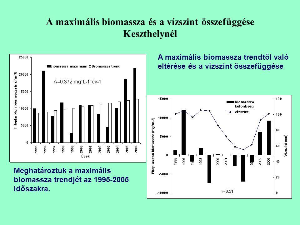 A maximális biomassza és a vízszint összefüggése Keszthelynél r=0.51 Meghatároztuk a maximális biomassza trendjét az 1995-2005 időszakra.