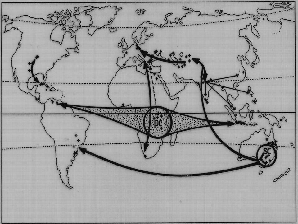 JELENSÉG KITERJEDÉSOKOK 1975.