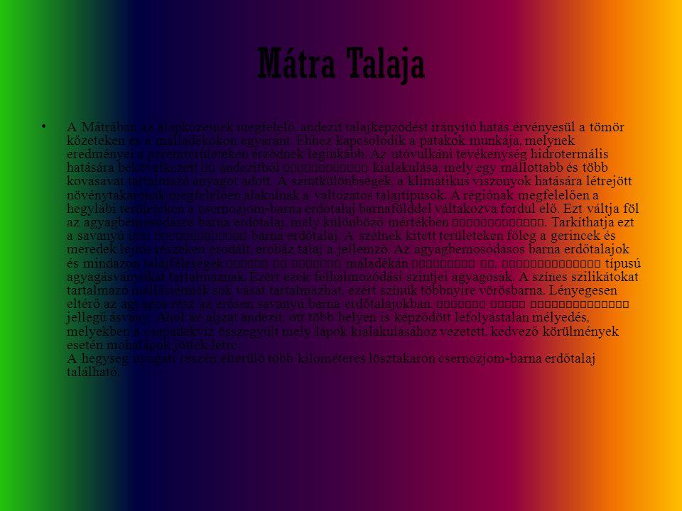 Mátra Talaja A Mátrában az alapkőzetnek megfelelő, andezit talajképződést irányító hatás érvényesül a tömör kőzeteken és a málladékokon egyaránt. Ehhe