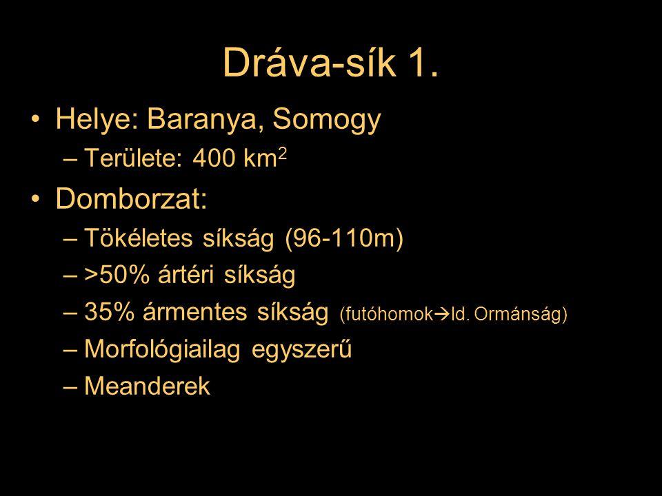 Dráva-sík 1. Helye: Baranya, Somogy –Területe: 400 km 2 Domborzat: –Tökéletes síkság (96-110m) –>50% ártéri síkság –35% ármentes síkság (futóhomok  l