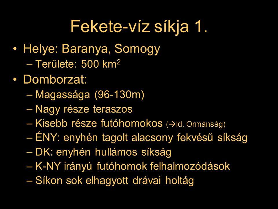 Fekete-víz síkja 1. Helye: Baranya, Somogy –Területe: 500 km 2 Domborzat: –Magassága (96-130m) –Nagy része teraszos –Kisebb része futóhomokos (  ld.