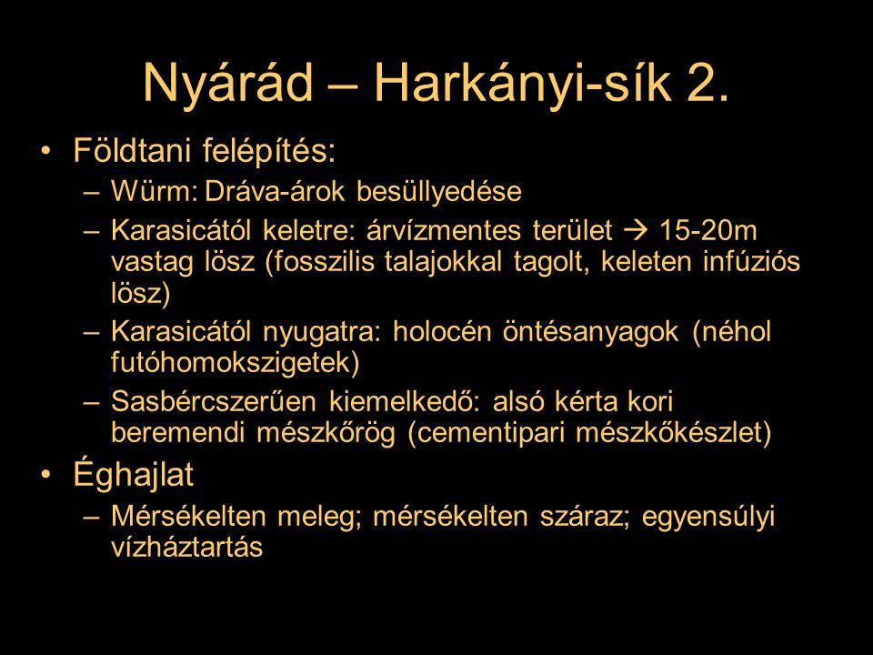 Nyárád – Harkányi-sík 2. Földtani felépítés: –Würm: Dráva-árok besüllyedése –Karasicától keletre: árvízmentes terület  15-20m vastag lösz (fosszilis