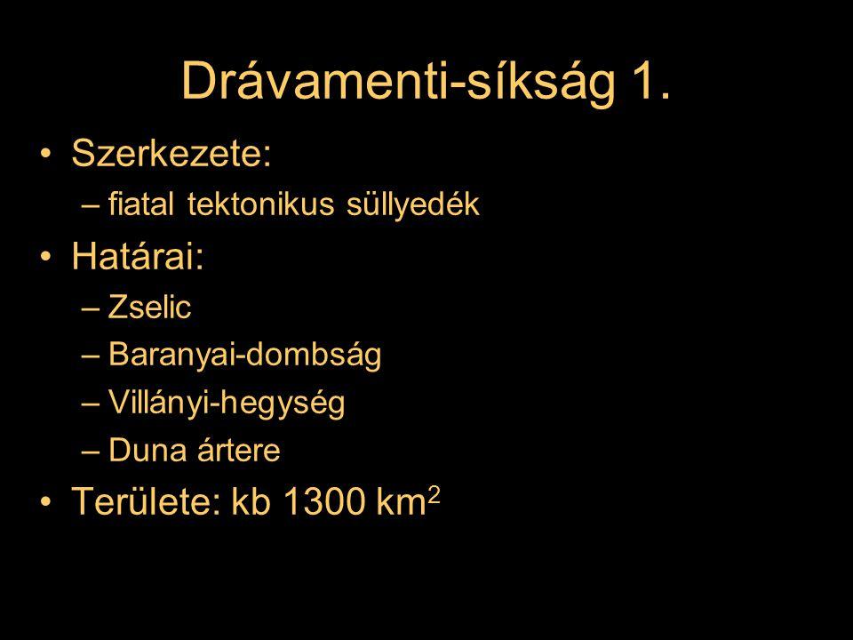 Drávamenti-síkság 1. Szerkezete: –fiatal tektonikus süllyedék Határai: –Zselic –Baranyai-dombság –Villányi-hegység –Duna ártere Területe: kb 1300 km 2