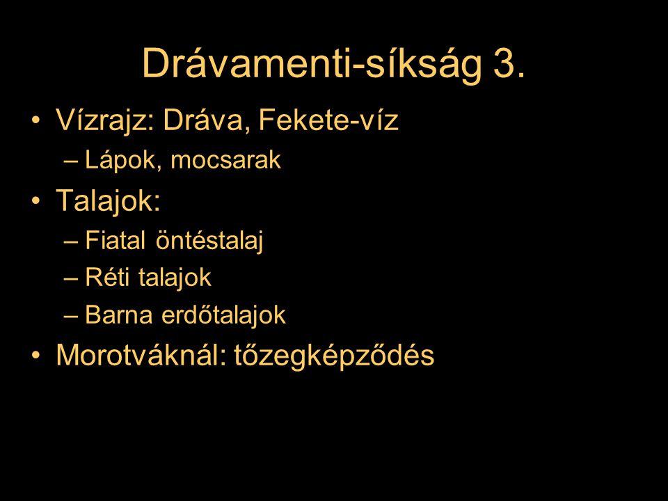 Drávamenti-síkság 4.