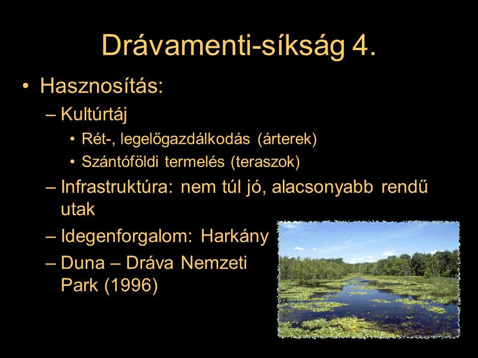 Tájtagozódás Nagytáj: ALFÖLD Középtáj: Drávamenti-síkság Kistájak: –Dráva-sík –Fekete-víz síkja –Nyárád – Harkányi-sík –Ormánság