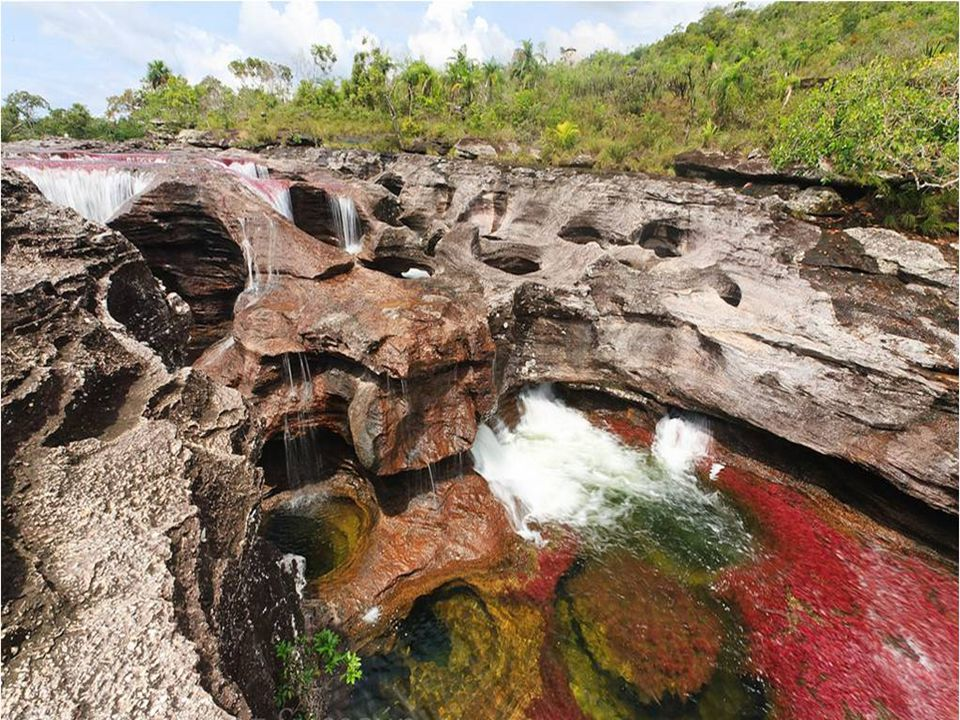 A sziklák, amelyek felett a folyó folyik, az örvény kis kör alakú üregeket, úgynevezett csirke fészkeket hoz létre.