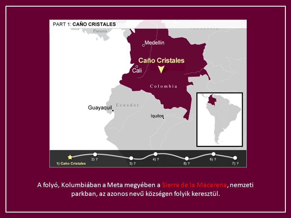 A folyó, Kolumbiában a Meta megyében a Sierra de la Macarena, nemzeti parkban, az azonos nevű községen folyik keresztül.