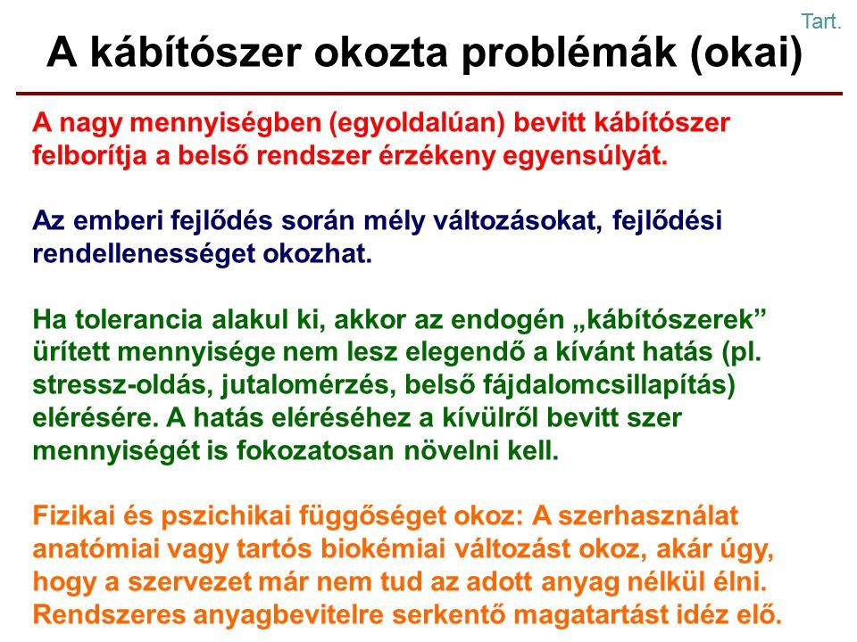 A kábítószer okozta problémák (okai) A nagy mennyiségben (egyoldalúan) bevitt kábítószer felborítja a belső rendszer érzékeny egyensúlyát.