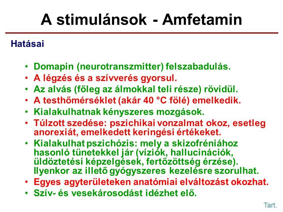 A stimulánsok - Amfetamin Hatásai Domapin (neurotranszmitter) felszabadulás.