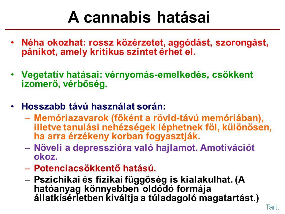 A cannabis hatásai Néha okozhat: rossz közérzetet, aggódást, szorongást, pánikot, amely kritikus szintet érhet el.