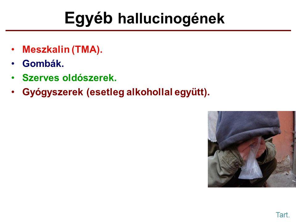 Egyéb hallucinogének Meszkalin (TMA).Gombák. Szerves oldószerek.