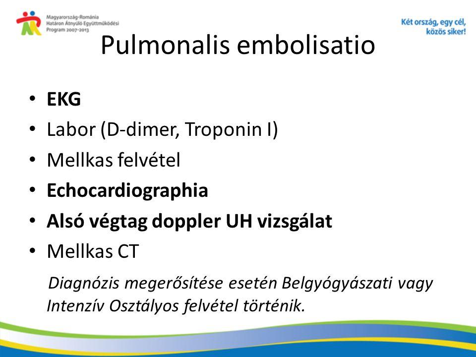 Pulmonalis embolisatio EKG Labor (D-dimer, Troponin I) Mellkas felvétel Echocardiographia Alsó végtag doppler UH vizsgálat Mellkas CT Diagnózis megerő