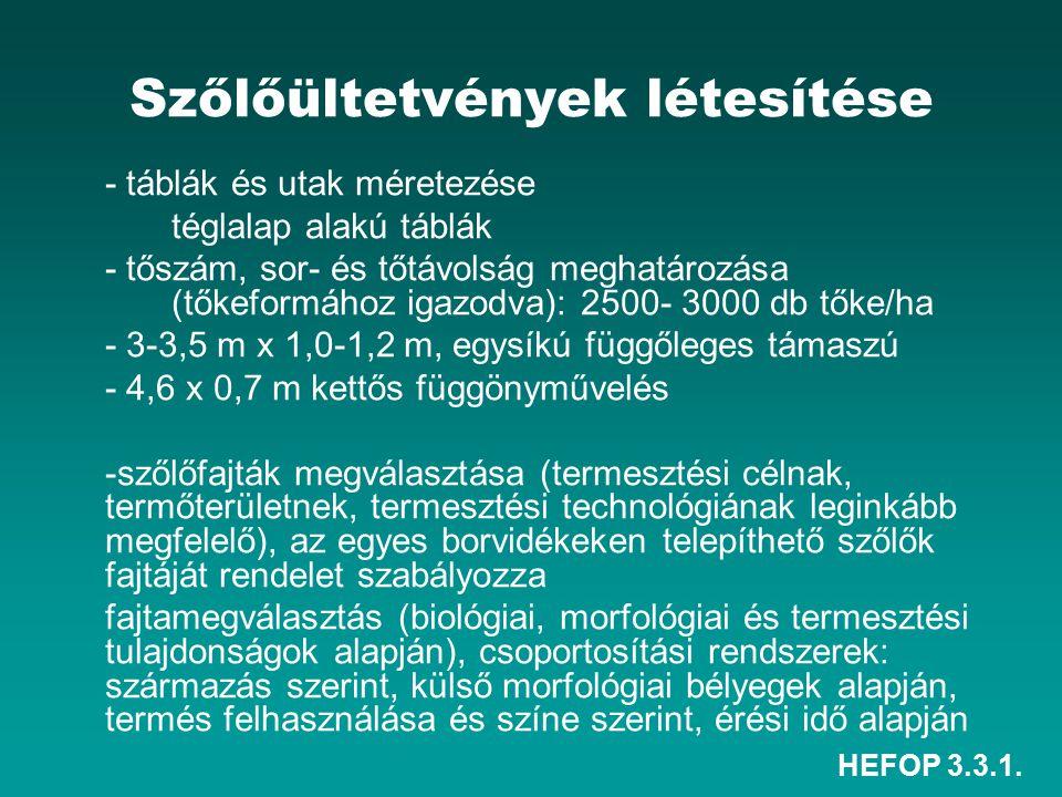 HEFOP 3.3.1.Tőkeművelésmódok c.) Magas ill.