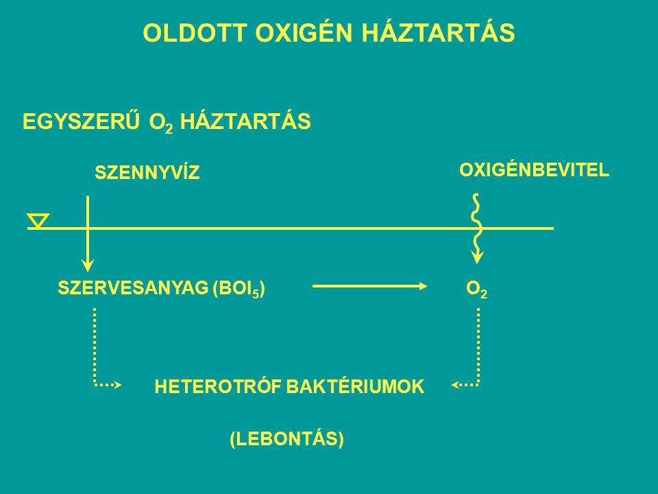 BIOKÉMIAI OXIGÉNFOGYASZTÁS - BOI 5 BOI  BOI 5 t (nap) BOI (mg/l)