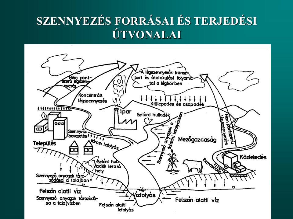 """1960-as évektől Tápanyagok (P,N) Urbanizáció  csatornázás Mezőgazdaság  műtrágyák, talajerózió Rövid-,és hosszútávú viselkedés Külső, hidrometeorológiai tényezők: (fény, hőmérséklet,turbulencia) Szabályozás: Vízgyűjtőn (szvtt-tápanyag eltávolítás, """"land use management ) Beavatkozások a tóban Mesterséges eutrofizáció"""
