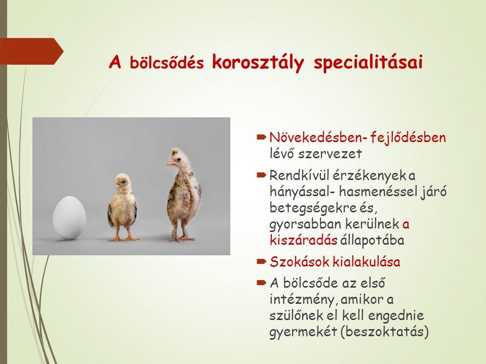 A bölcsődés korosztály specialitásai  Növekedésben- fejlődésben lévő szervezet  Rendkívül érzékenyek a hányással- hasmenéssel járó betegségekre és, gyorsabban kerülnek a kiszáradás állapotába  Szokások kialakulása  A bölcsőde az első intézmény, amikor a szülőnek el kell engednie gyermekét (beszoktatás)