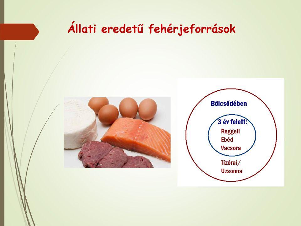 Állati eredetű fehérjeforrások