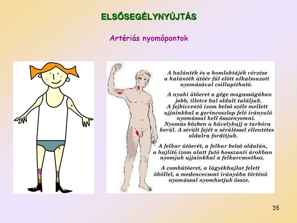 35 ELSŐSEGÉLYNYÚJTÁS Artériás nyomópontok