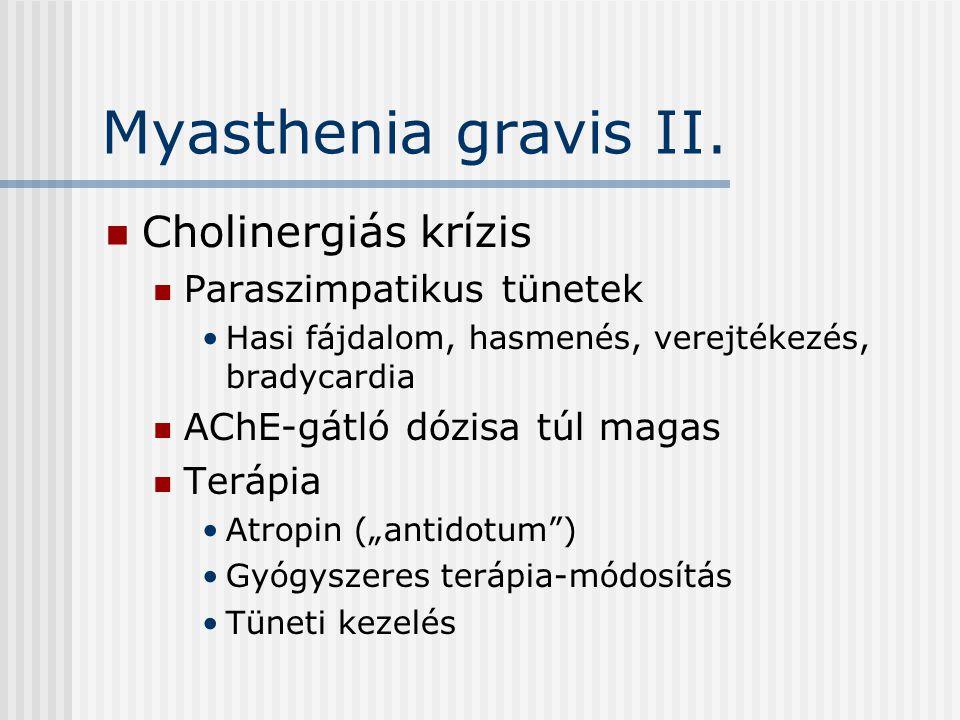 Myasthenia gravis II. Cholinergiás krízis Paraszimpatikus tünetek Hasi fájdalom, hasmenés, verejtékezés, bradycardia AChE-gátló dózisa túl magas Teráp