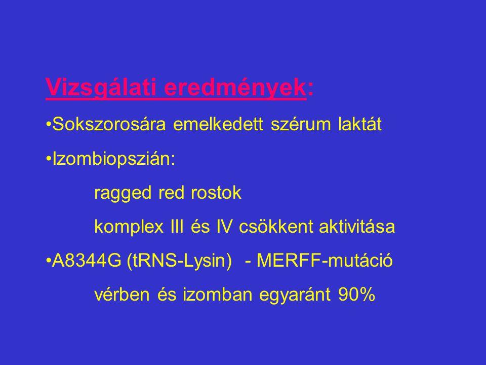 Vizsgálati eredmények: Sokszorosára emelkedett szérum laktát Izombiopszián: ragged red rostok komplex III és IV csökkent aktivitása A8344G (tRNS-Lysin) - MERFF-mutáció vérben és izomban egyaránt 90%