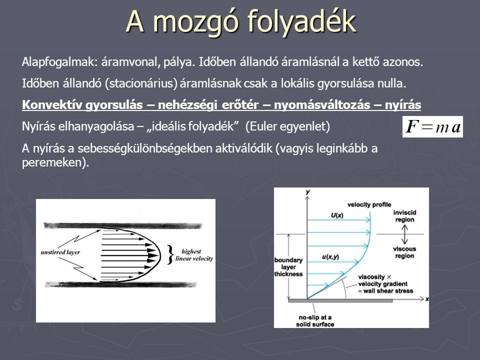 A mozgó folyadék Alapfogalmak: áramvonal, pálya.Időben állandó áramlásnál a kettő azonos.