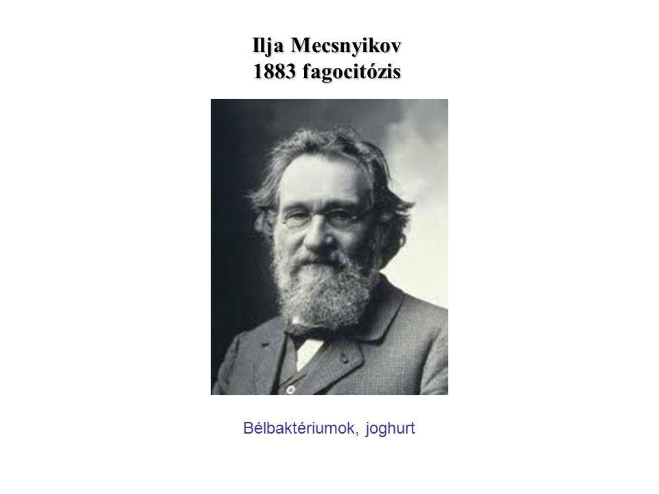 Ilja Mecsnyikov 1883 fagocitózis Bélbaktériumok, joghurt