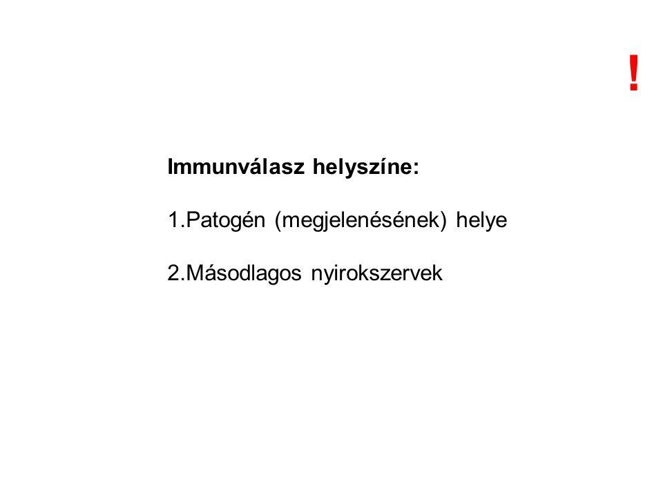 Immunválasz helyszíne: 1.Patogén (megjelenésének) helye 2.Másodlagos nyirokszervek !