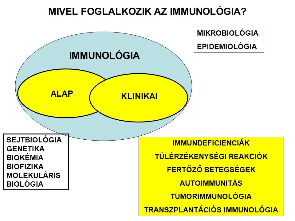MIVEL FOGLALKOZIK AZ IMMUNOLÓGIA? IMMUNOLÓGIA MIKROBIOLÓGIA EPIDEMIOLÓGIA SEJTBIOLÓGIA GENETIKA BIOKÉMIA BIOFIZIKA MOLEKULÁRIS BIOLÓGIA ALAP IMMUNDEFI