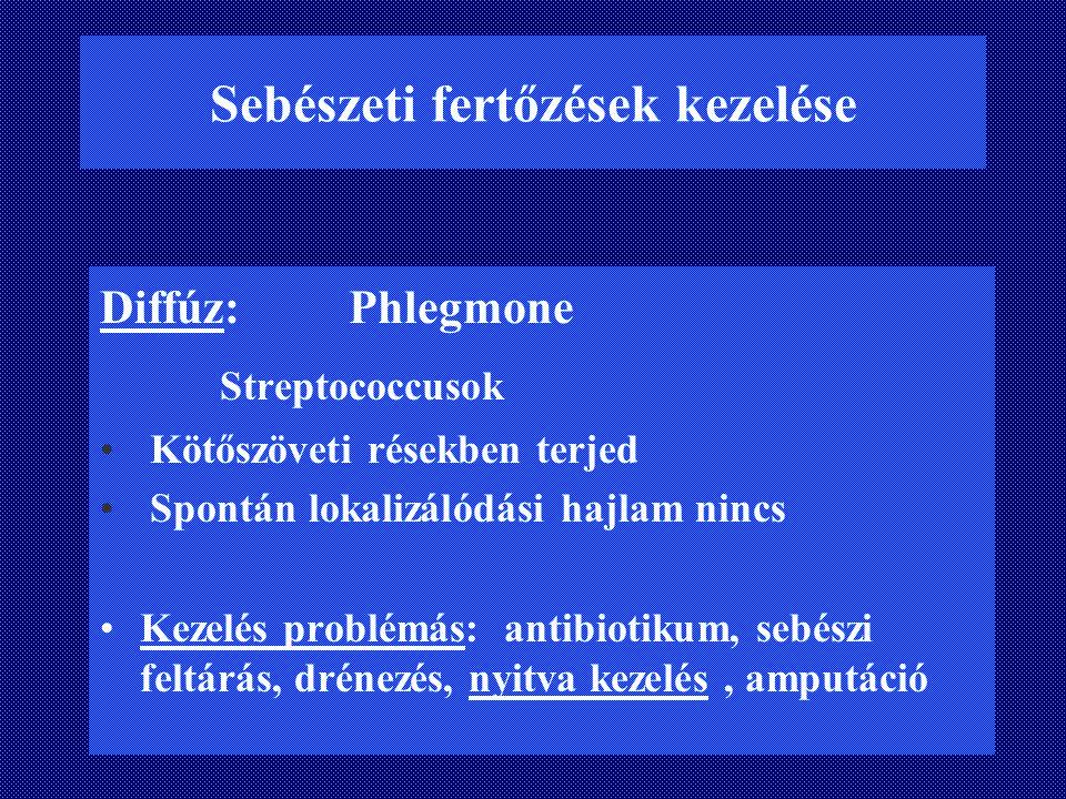 Sebészeti fertőzések kezelése Diffúz: Phlegmone Streptococcusok Kötőszöveti résekben terjed Spontán lokalizálódási hajlam nincs Kezelés problémás: ant