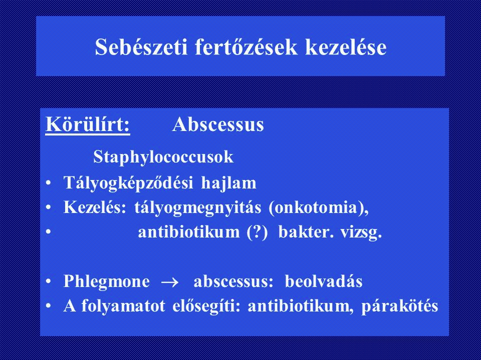 Sebészeti fertőzések kezelése Körülírt: Abscessus Staphylococcusok Tályogképződési hajlam Kezelés: tályogmegnyitás (onkotomia), antibiotikum (?) bakte