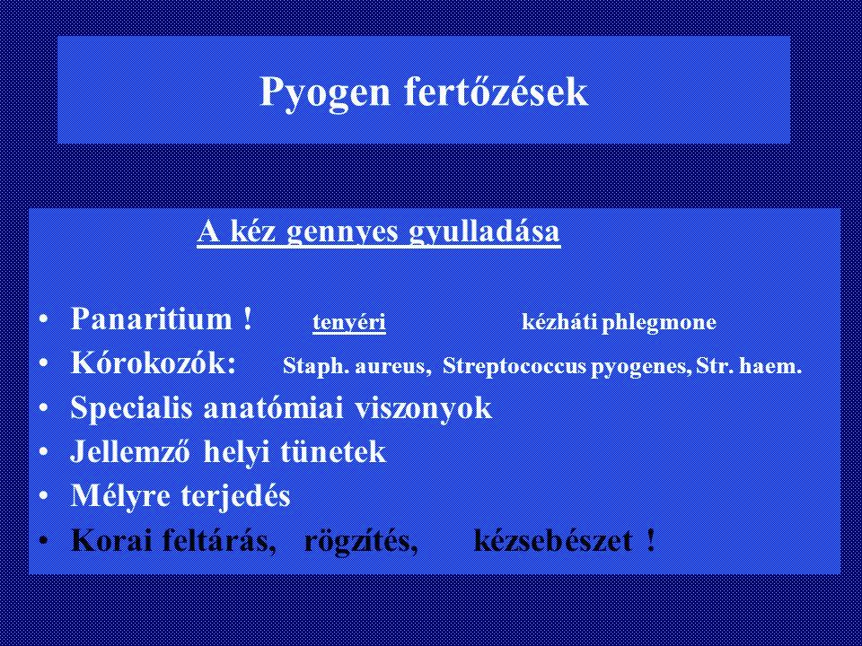 Pyogen fertőzések A kéz gennyes gyulladása Panaritium ! tenyéri kézháti phlegmone Kórokozók: Staph. aureus, Streptococcus pyogenes, Str. haem. Special