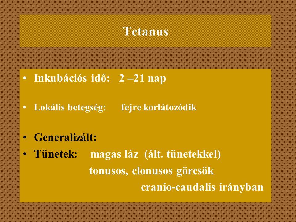 Tetanus Inkubációs idő: 2 –21 nap Lokális betegség: fejre korlátozódik Generalizált: Tünetek: magas láz (ált. tünetekkel) tonusos, clonusos görcsök cr