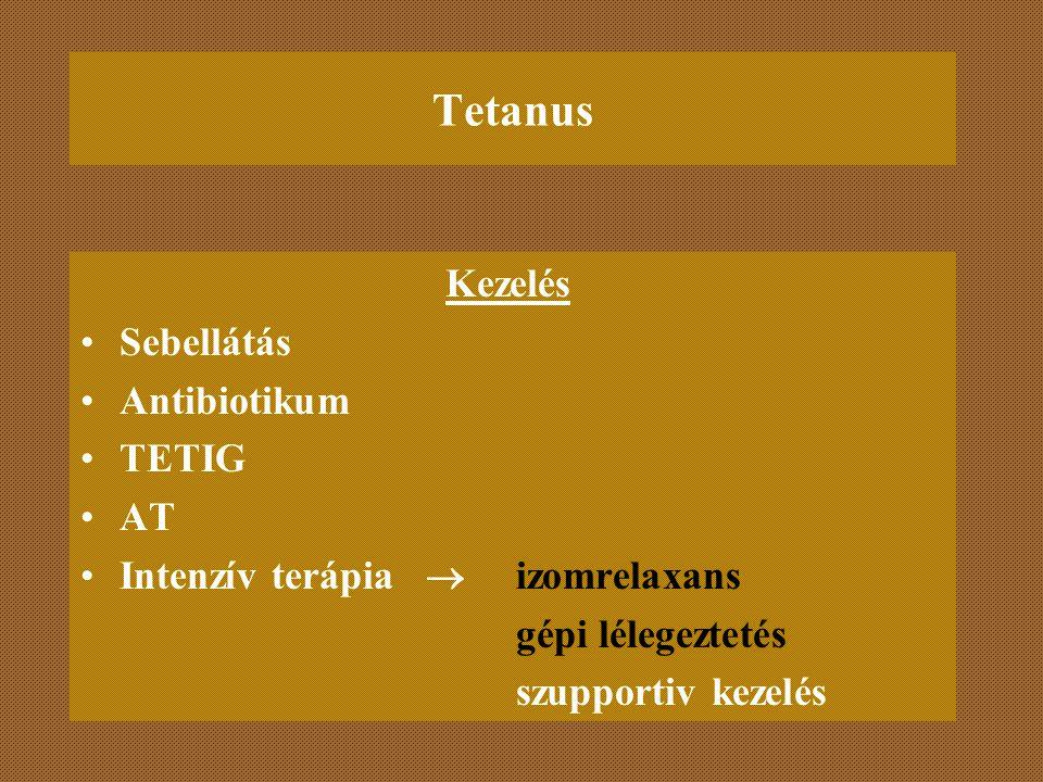 Tetanus Kezelés Sebellátás Antibiotikum TETIG AT Intenzív terápia  izomrelaxans gépi lélegeztetés szupportiv kezelés