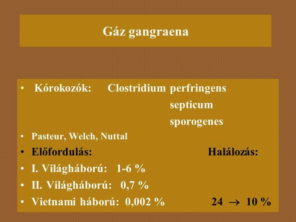 Gáz gangraena Kórokozók: Clostridium perfringens septicum sporogenes Pasteur, Welch, Nuttal Előfordulás: Halálozás: I. Világháború: 1-6 % II. Világháb