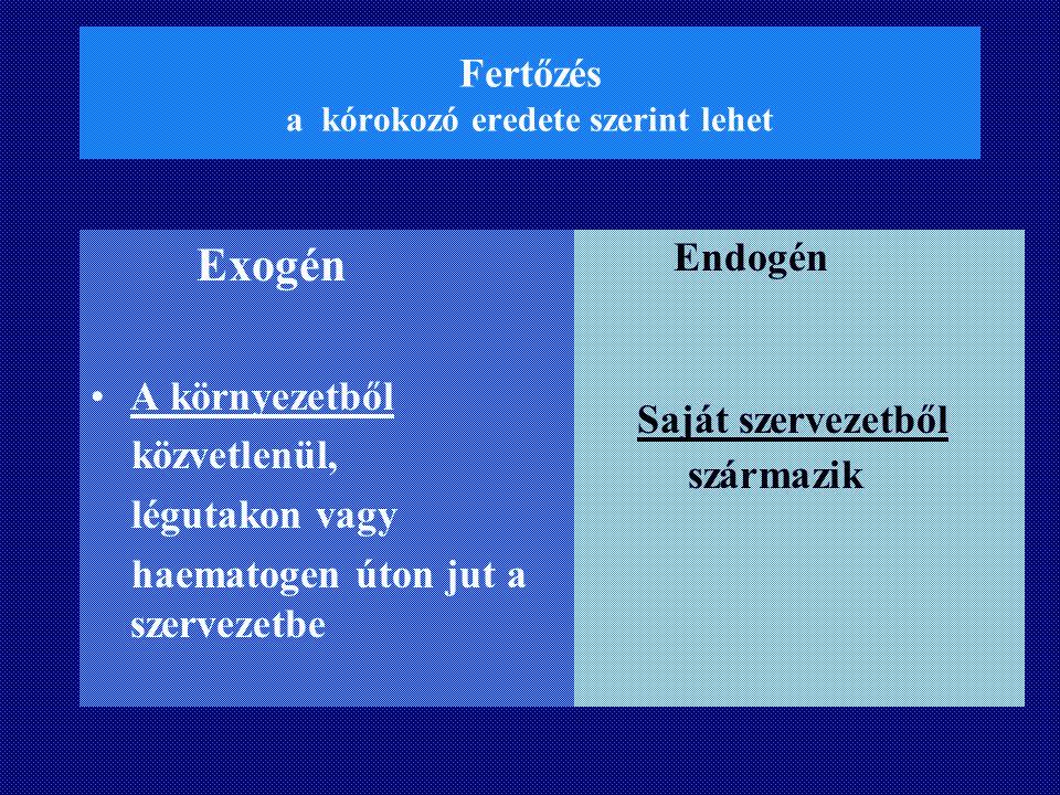Fertőzés a kórokozó eredete szerint lehet Exogén A környezetből közvetlenül, légutakon vagy haematogen úton jut a szervezetbe Endogén Saját szervezetb