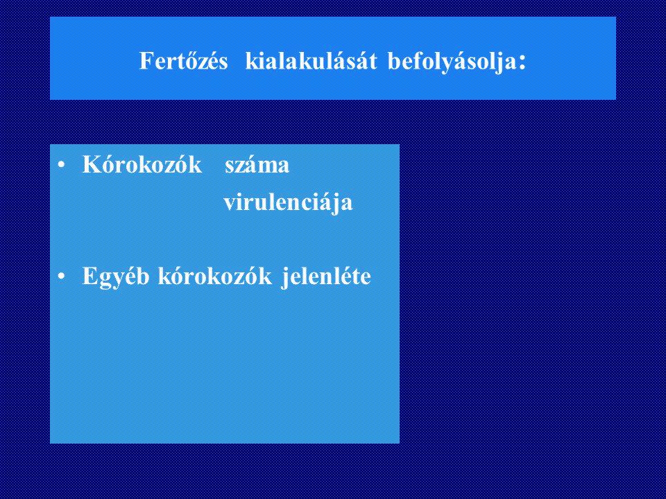 VEZÉRLŐPULT: ELEKTRO HIDRAULIKUS 69dr. G.A.