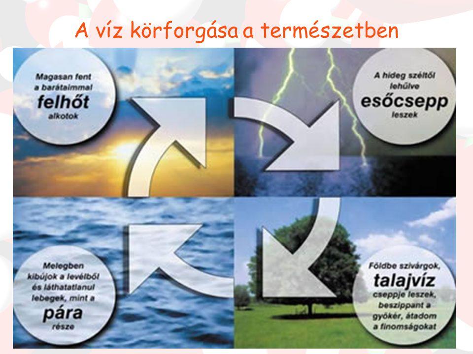 A víz elterjedése a Földön A Föld víztartalékai nagyban befolyásolják a Föld éghajlatát.(Üvegházhatású gáz) A Föld teljes vízkészlete 1500 millió köbk