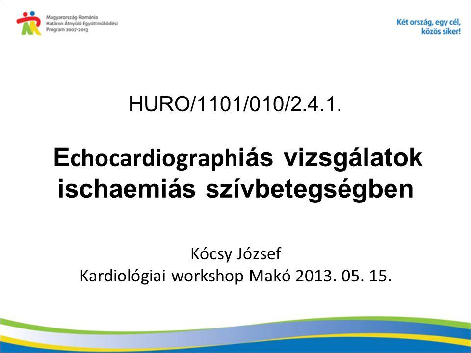 HURO/1101/010/2.4.1. E chocardiograph iás vizsgálatok ischaemiás szívbetegségben Kócsy József Kardiológiai workshop Makó 2013. 05. 15.
