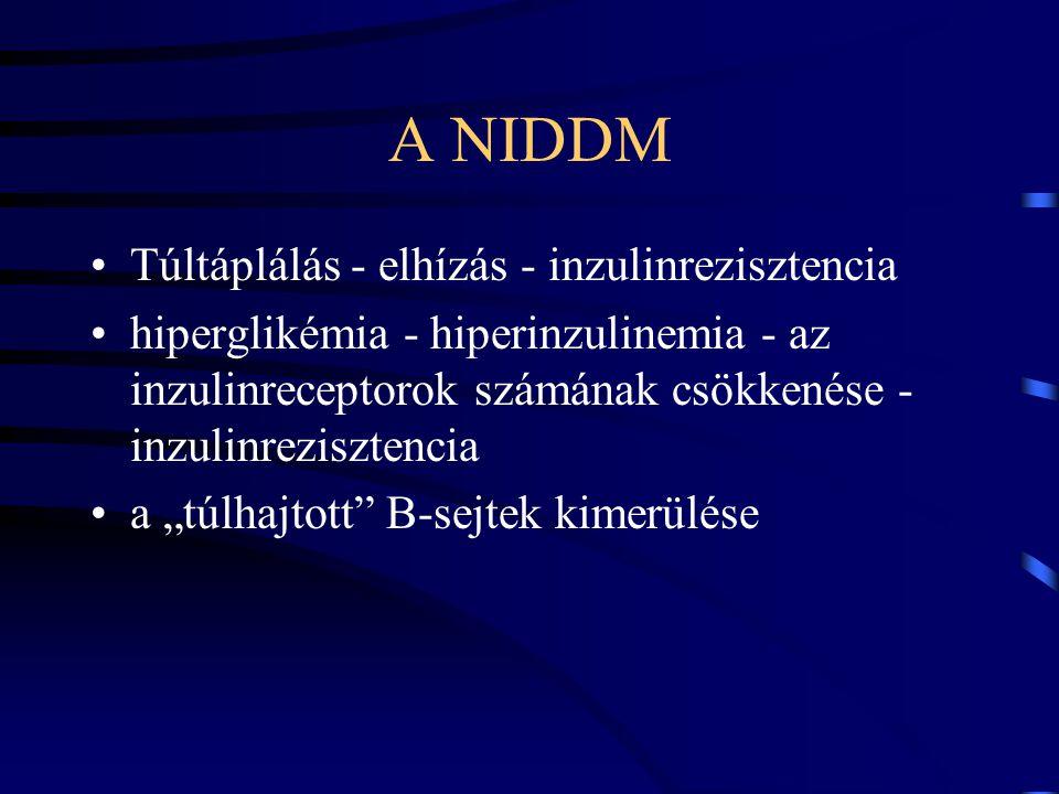 A NIDDM Túltáplálás - elhízás - inzulinrezisztencia hiperglikémia - hiperinzulinemia - az inzulinreceptorok számának csökkenése - inzulinrezisztencia