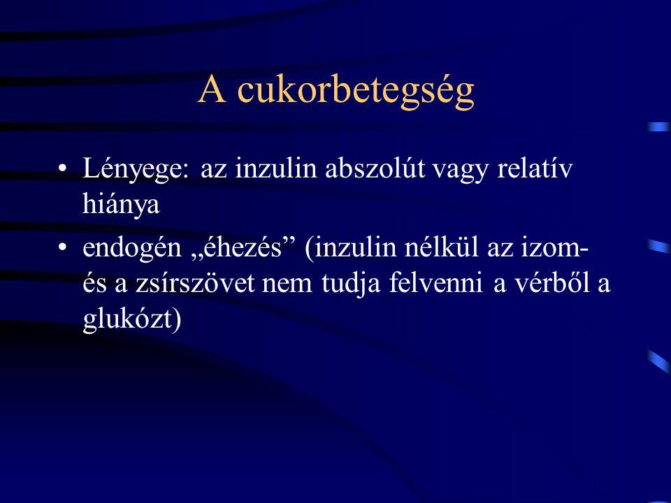 A cukorbetegség Következmények: –hiperglikémia –glukoneogenezis a májban –izomszövet veszteség –zsírszövetből zsírsav felszabadulás - ketontestek