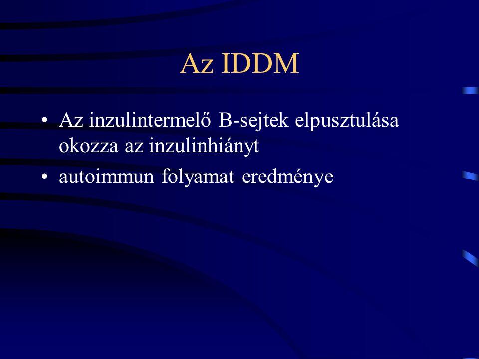Az IDDM Öröklődés direkt szerepe kicsi - a hajlam kismértékben öröklődik Környezeti tényezők: –D-ről - É-ra egyre nő az előfordulás valószínűsége –téli hónapok - vírusfertőzés, mint elindító ok –az arra hajlamosoknál a szoptatás korai abbahagyása jelentős