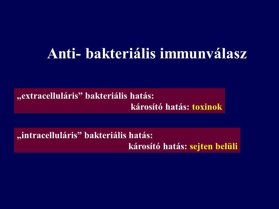 """A fertőzések terjedésének okai- az infectológia növekvő jelentősége Anti-mikrobiális szerek - evolúciós nyomás, rezisztens törzsek terjedése Immunhiányok, immunszuppresszív terápiák- in vivo """"kisérleti telep Civilizációs környezet- légkondicionálás- - új ipari ökológiai viszonyok Új etiológiai megközelitések: Staphylococcus-osteomyelitis Helicobacter p.- ulcus Chlamydia, CMV- infarctus A következő 20-30 év sztárfoglalkozása: molekuláris infectológus, epidemiológus genomikai, bioinformatikai háttérrel"""