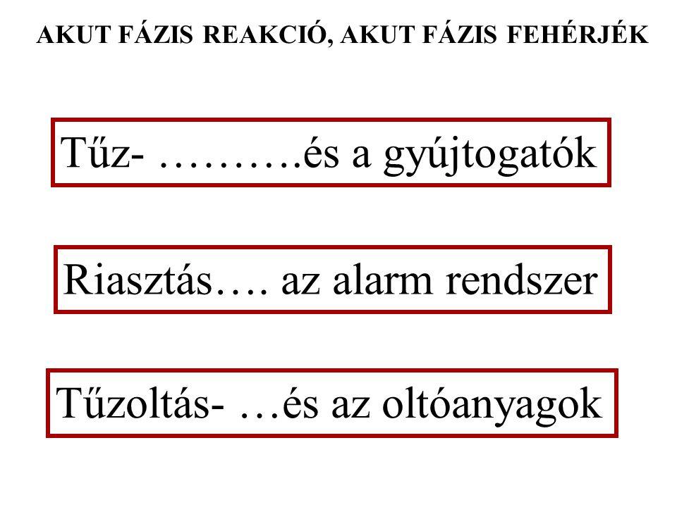 Gyulladás, akut-fázis reakció és fertőzés Falus András