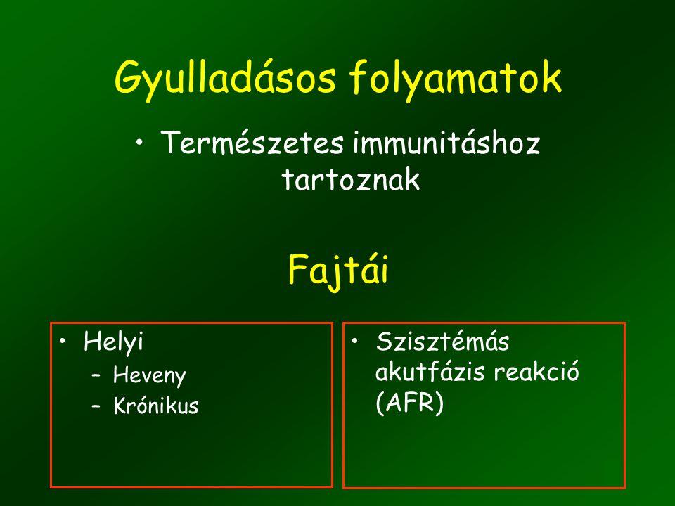Az AFR eredménye: a szisztémás, akut gyulladás gátlása