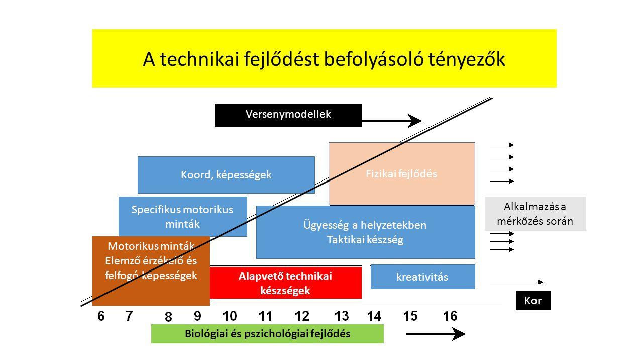 kreativitás Ügyesség a helyzetekben Taktikai készség Specifikus motorikus minták Fizikai fejlődés Koord, képességek Alapvető technikai készségek Motor