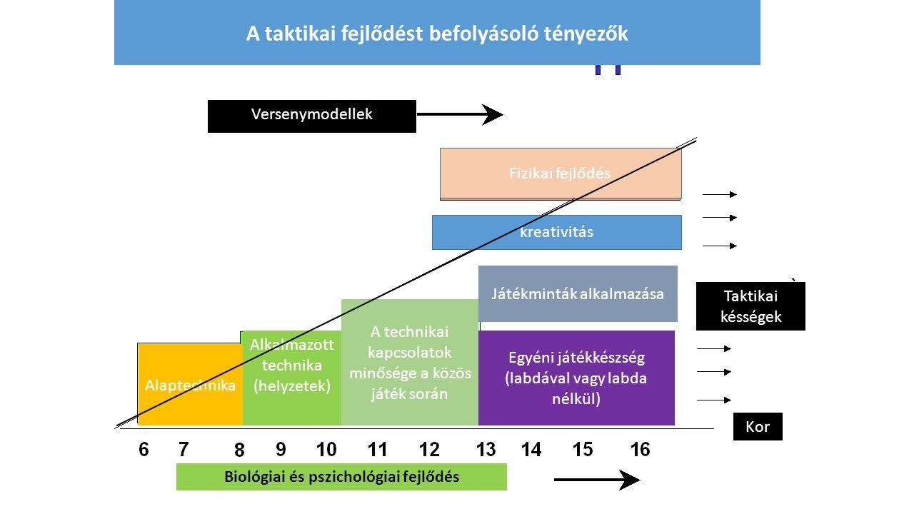 A taktikai fejlődést befolyásoló tényezők Fizikai fejlődés kreativitás Alaptechnika Alkalmazott technika (helyzetek) Taktikai késségek Kor Biológiai é