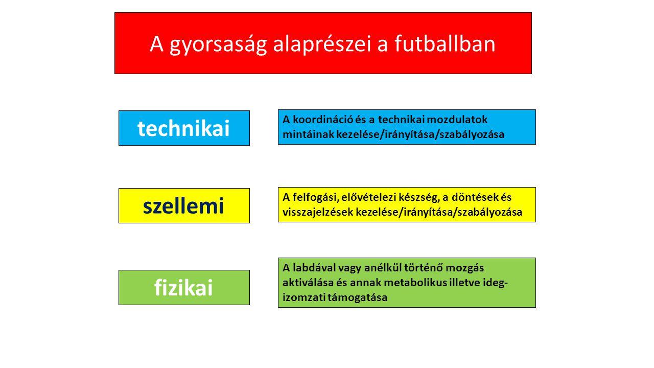 A gyorsaság alaprészei a futballban technikai fizikai szellemi A koordináció és a technikai mozdulatok mintáinak kezelése/irányítása/szabályozása A fe