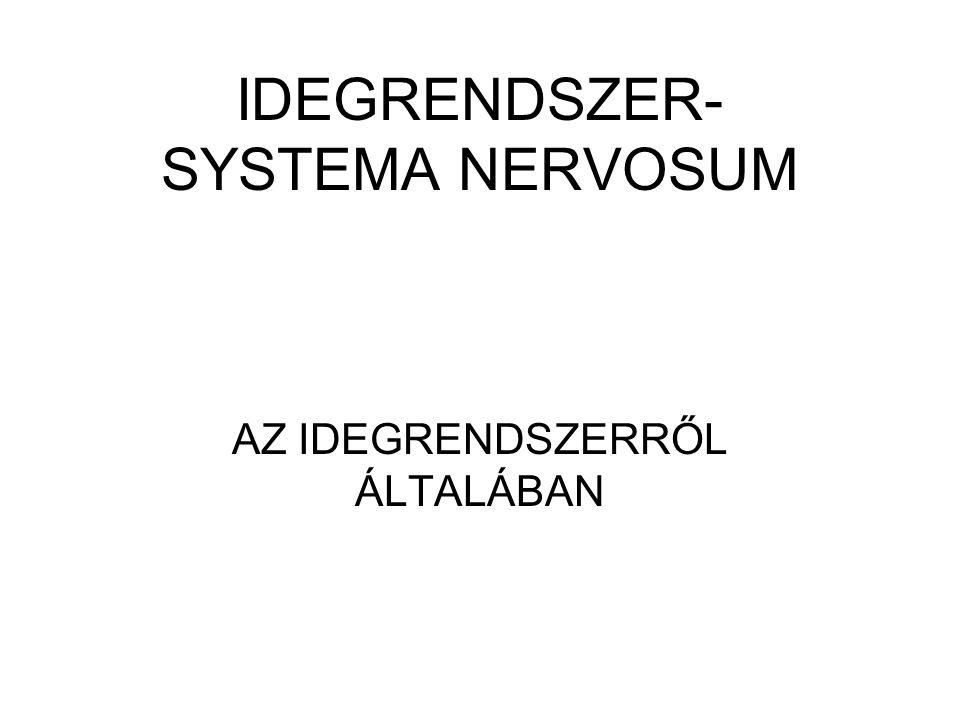 IDEGRENDSZER- SYSTEMA NERVOSUM AZ IDEGRENDSZERRŐL ÁLTALÁBAN