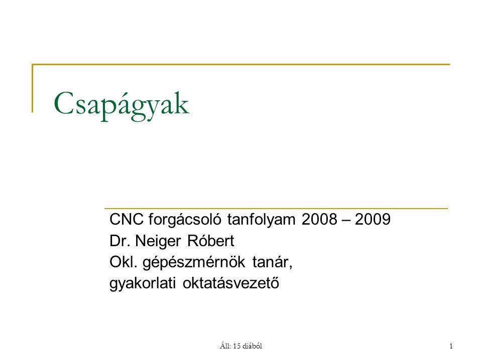 Áll: 15 diából1 Csapágyak CNC forgácsoló tanfolyam 2008 – 2009 Dr. Neiger Róbert Okl. gépészmérnök tanár, gyakorlati oktatásvezető